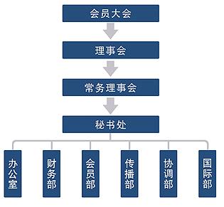 治理信息 > 组织结构